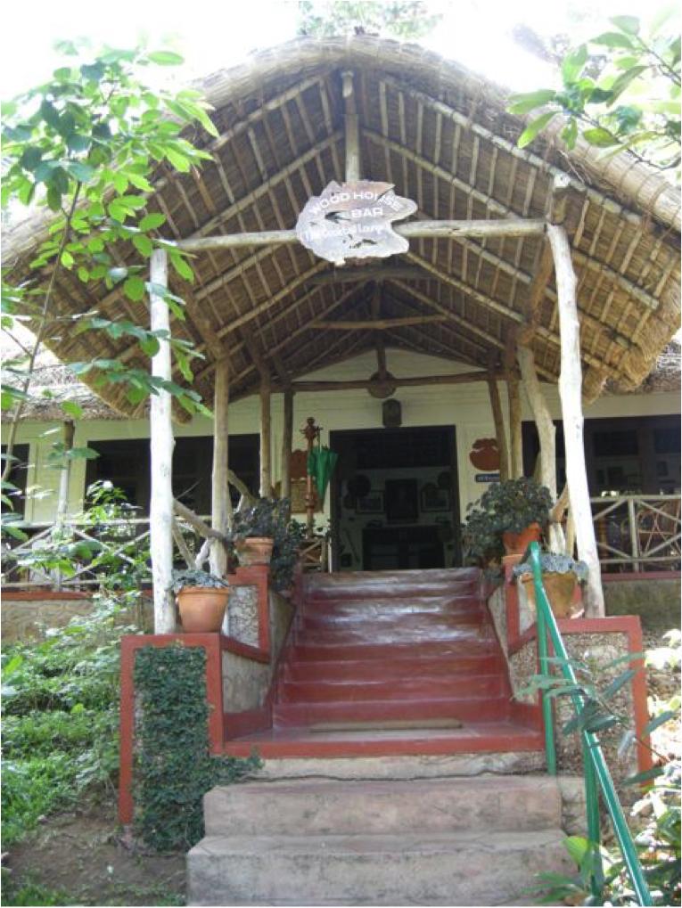 bar steps
