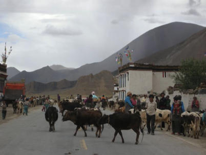 Faces of Tibet 101