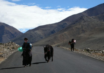 Faces of Tibet 78