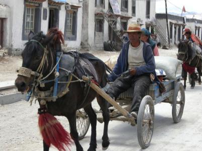 Faces of Tibet 90