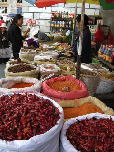 Lhasa 13