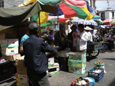 Lhasa 18