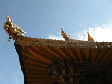 Lhasa 31