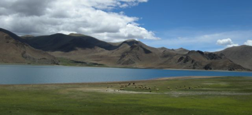 Lhasa 4