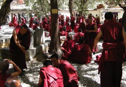 Lhasa 56