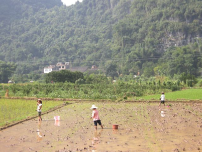 China_A River Runs 77