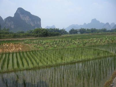 China_A River Runs 94