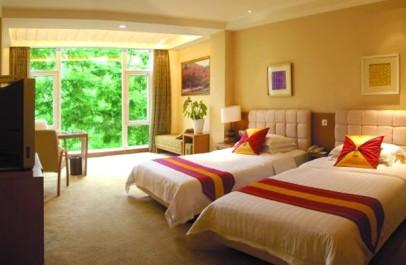 Emei Shan Hotel room