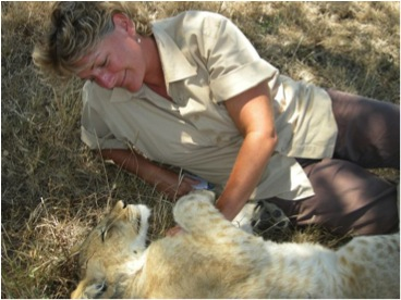 tracy and lion 2